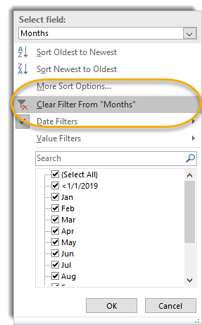 Clear filter option in pivot filter button dropdown